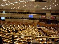 europarlamentariilaraport